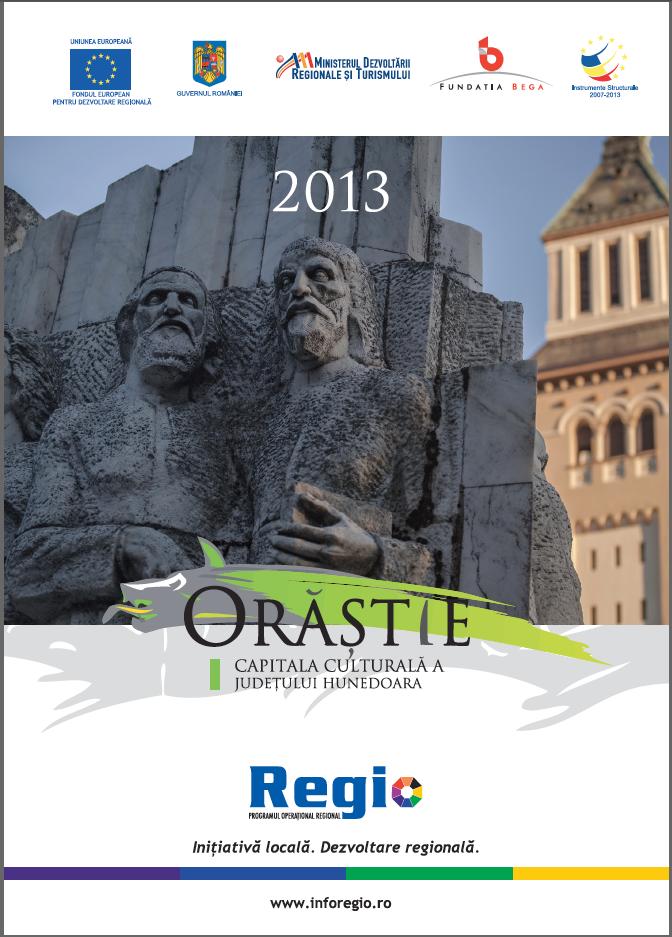 Proiect amplu Regio realizat pentru Fundatia Bega